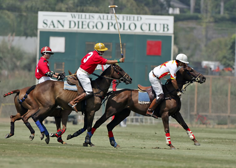 USD Day at the Polo Club